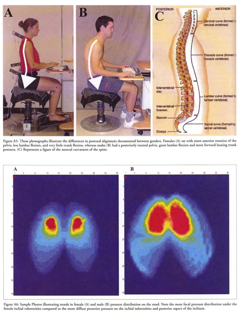 Wirbelsäule, Sitzen, Pressung