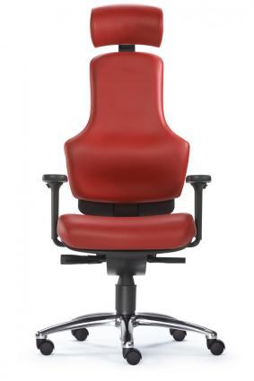 Sitwell Profi - Der patentierte Bandscheiben - Sessel Nr. 1