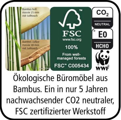 Bambus_Büro
