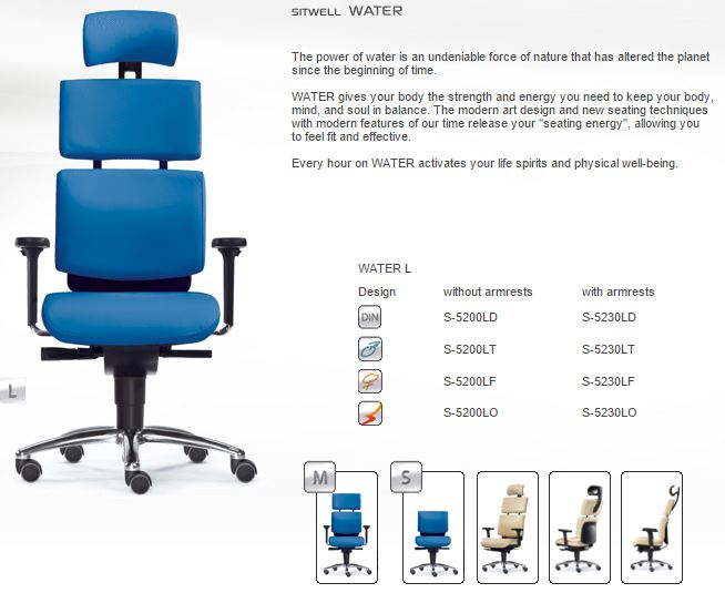Sitwell-office-chairs-los-angeles-ergonomic_health_chair
