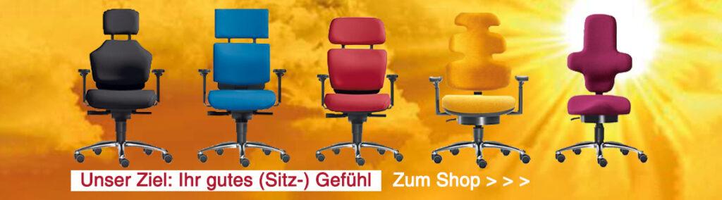 Dieses Bild hat ein leeres Alt-Attribut. Der Dateiname ist Buerostuhl_Shop_Rueckenschmerzen-1024x284.jpg